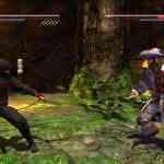 DW-Ancient Combat pic 1