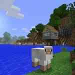 Minecraft 360 pic 11