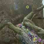 Pikmin 3 pic 4