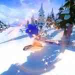 Mario Sonic Sochi 2014 pic 4