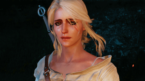 The Witcher 3 Story