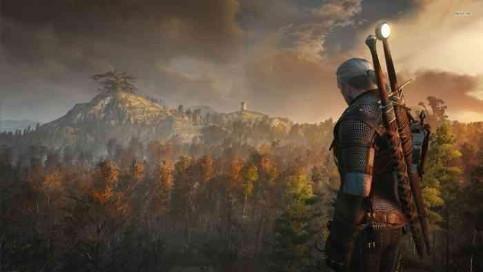 Witcher 3 Developer