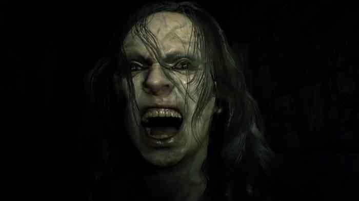 Resident Evil 7 Top Screen