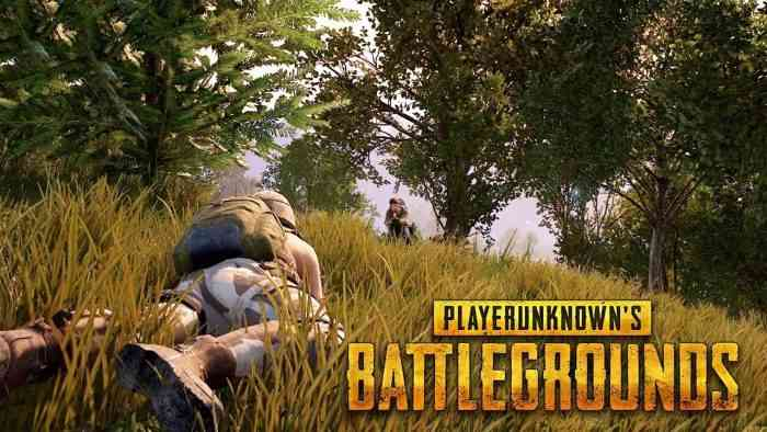 Playerunknown's Battlegrounds Update Adds New Guns, Adjusts Loot Spawns