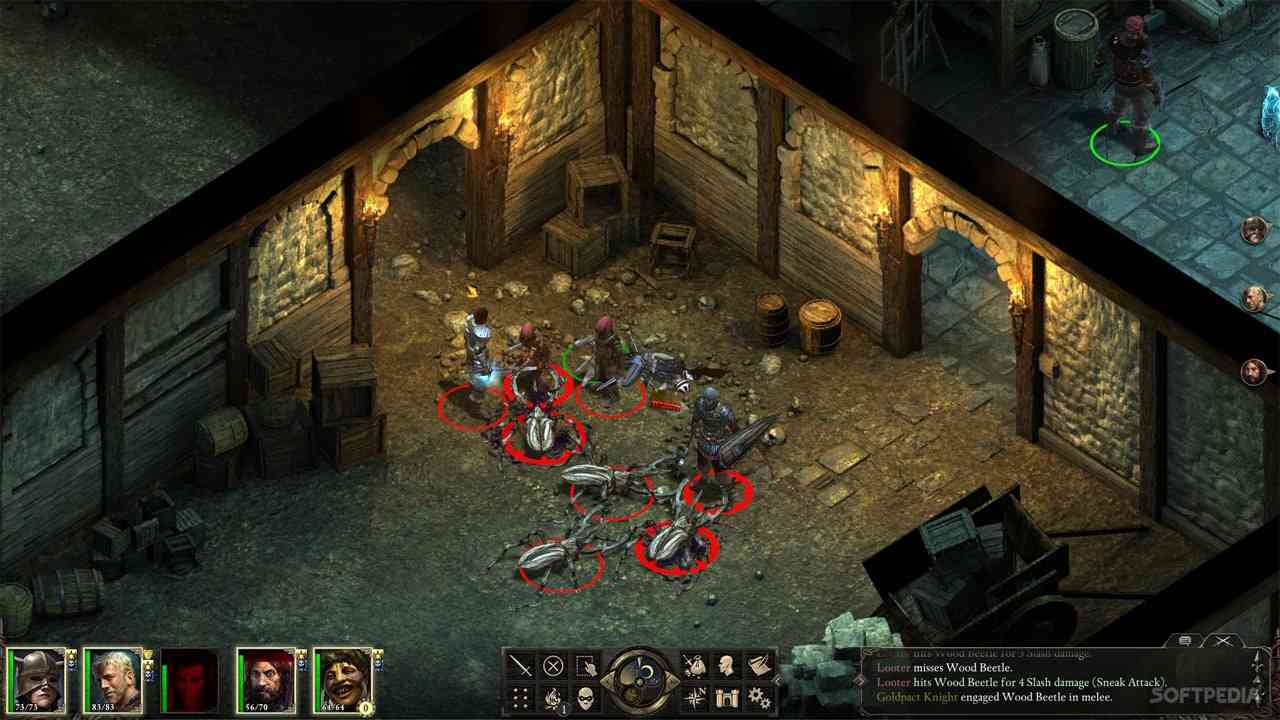 Pillars of Eternity is coming to consoles, for some reason