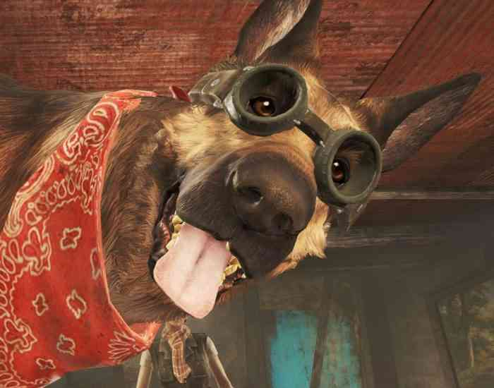 Can You Feed Your Dog In Fallout
