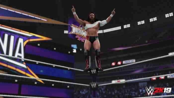 WWE 2K19 Gets Another Roster Reveal with a Ton of Smackdown