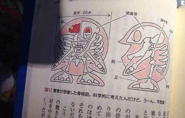 Kirby Skeleton