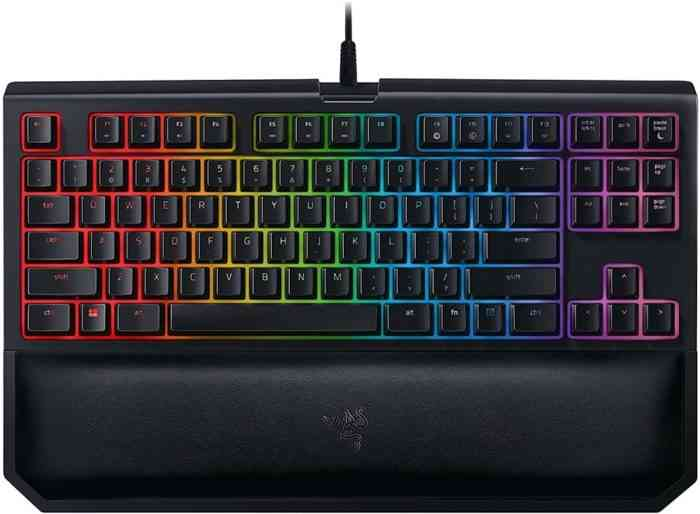 Razer BlackWidow TE Chroma v2 keyboard