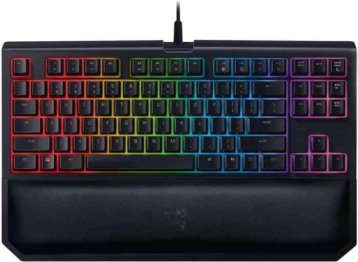 Razer BlackWidow TE Chroma v2 TKL Tenkeyless Mechanical Gaming Keyboard